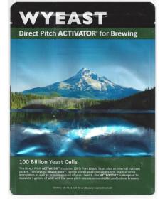 Northwest Ale: Wyeast 1332