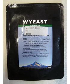 Brettanomyces Lambicus: Wyeast 5526