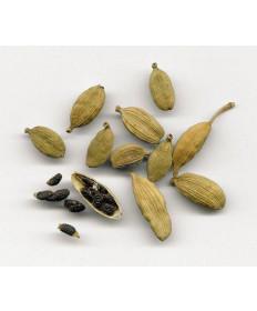 Cardamom Seed- 1 oz