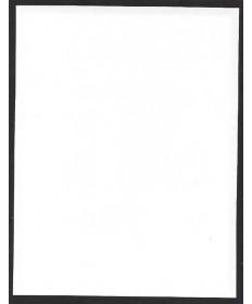 Plain #B14500