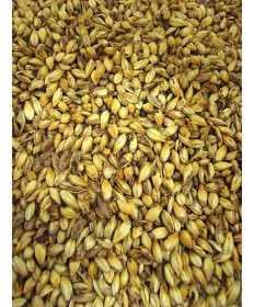 Crystal 80L Malt- Briess