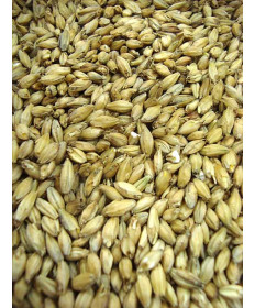 Brewers 2 Row Malt- Organic