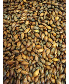 Roasted Barley- Briess