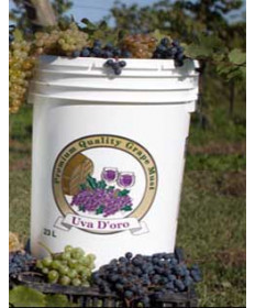 Sauvignon Blanc Juice- California