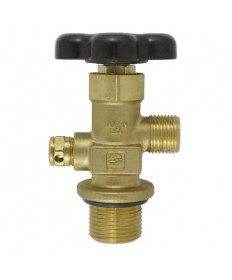 Co2 Valve Replacement