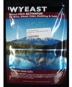 Sweet White: Wyeast 4783