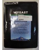 Peddiococcus: Wyeast 5733