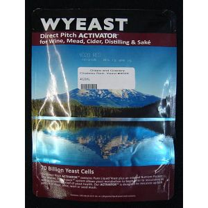 Chateau Red: Wyeast 4028
