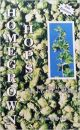 Homegrown Hops- 2nd Ed