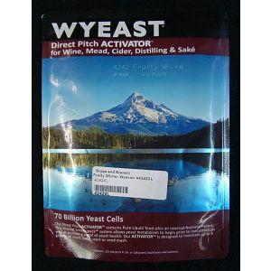 Fruity White: Wyeast 4242