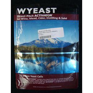 Italian Red: Wyeast 4244