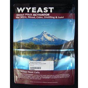 Bold Red: Wyeast 4946